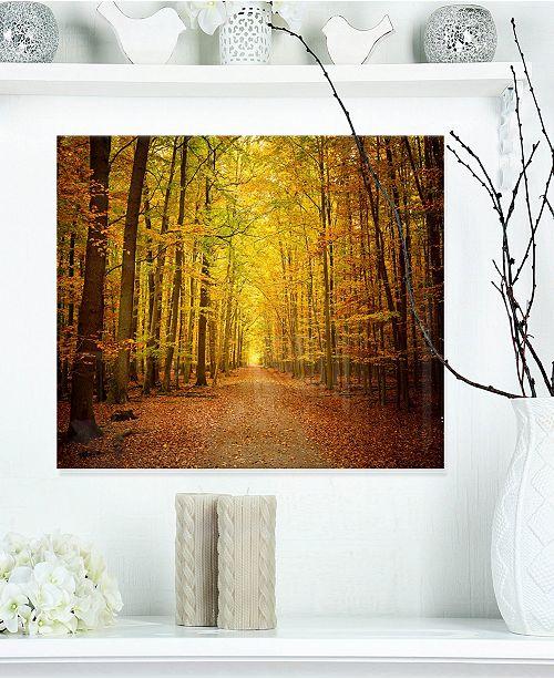 "Design Art Designart 'Pathway In Green Autumn Forest' Photography Metal Wall Art - 20"" X 12"""