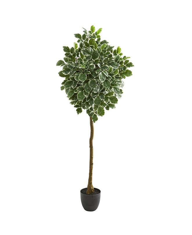 """Nearly Natural 6"""" Variegated Aralia Artificial Tree"""