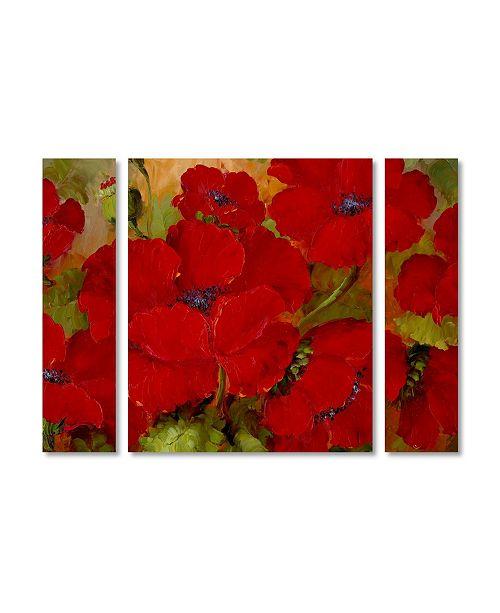 "Trademark Global Rio 'Poppies' Multi Panel Art Set Small - 32"" x 24"" x 2"""