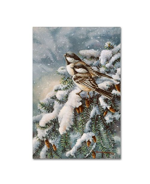 "Trademark Global Wanda Mumm 'Chickadee In Spruce' Canvas Art - 32"" x 22"" x 2"""