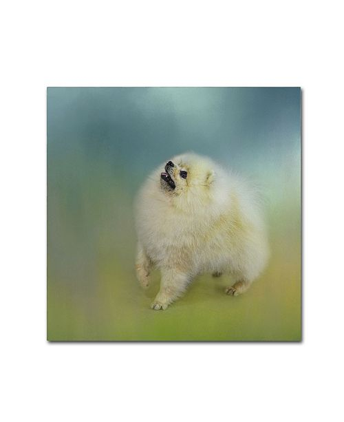 "Trademark Global Jai Johnson 'Watching For Rain Drops Pomeranian' Canvas Art - 24"" x 24"" x 2"""