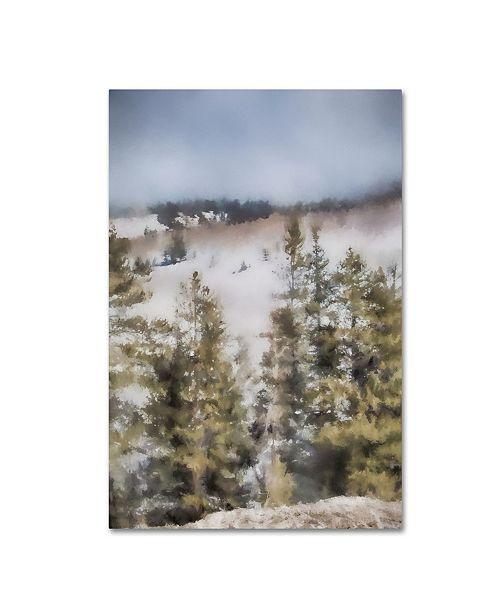 "Trademark Global Jai Johnson 'Winter Impressions In Colorado 3' Canvas Art - 19"" x 12"" x 2"""