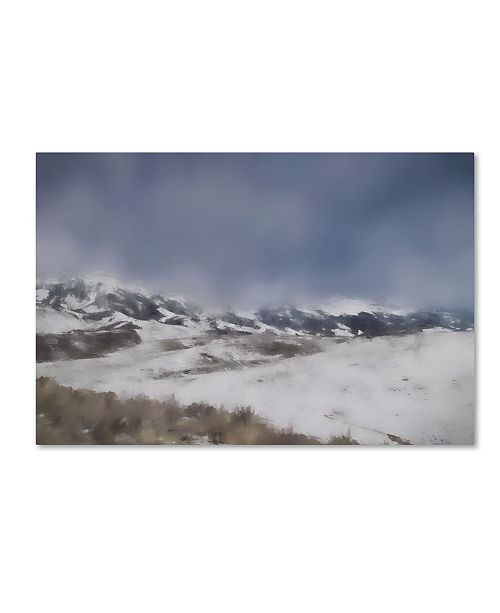 "Trademark Global Jai Johnson 'Winter Impressions In Colorado 5' Canvas Art - 24"" x 16"" x 2"""