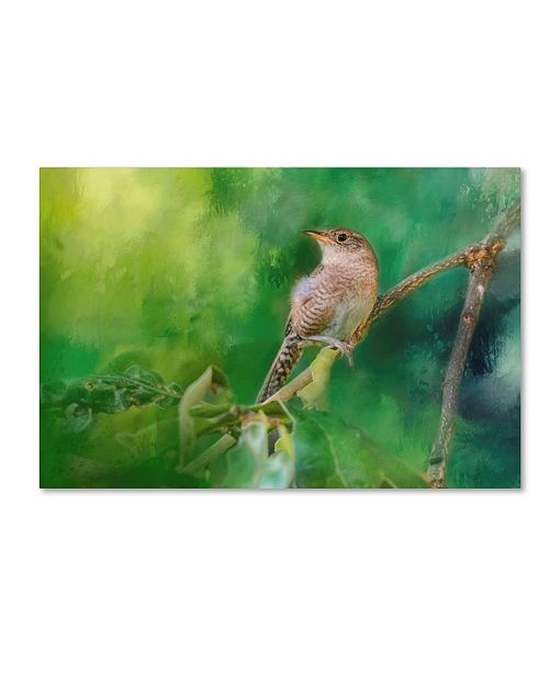 "Trademark Global Jai Johnson 'Wren In The Garden' Canvas Art - 32"" x 22"" x 2"""