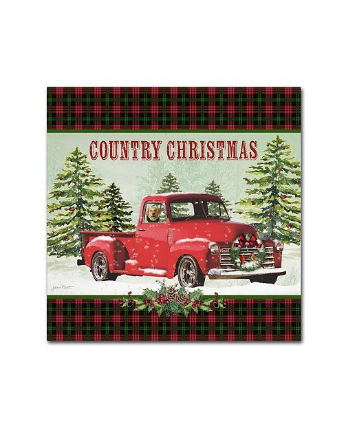 "Trademark Global Jean Plout 'Country Christmas 4' Canvas Art - 24"" x 24"" x 2"""