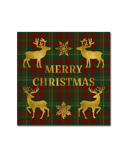 "Trademark Global Jean Plout 'Merry Christmas Plaid 6' Canvas Art - 24"" x 24"" x 2"""