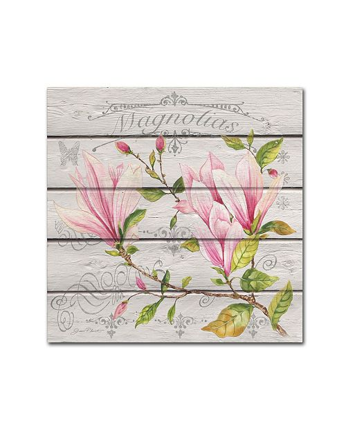 "Trademark Global Jean Plout 'Pink Magnolias 2' Canvas Art - 24"" x 24"" x 2"""