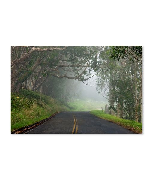 "Trademark Global Mike Jones Photo 'Foggy Road near Dillon Beach' Canvas Art - 47"" x 30"" x 2"""