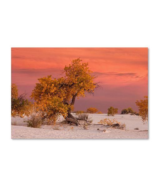 "Trademark Global Mike Jones Photo 'White Sands Yellow Tree' Canvas Art - 32"" x 22"" x 2"""