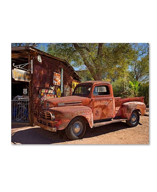 "Trademark Global Mike Jones Photo 'Hackberry 2' Canvas Art - 19"" x 14"" x 2"""