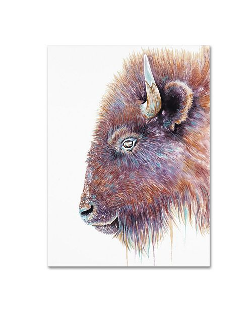 "Trademark Global Michelle Faber 'Spirit Of The West Buffalo' Canvas Art - 19"" x 14"" x 2"""