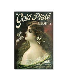 "Vintage Apple Collection 'Gold Plate' Canvas Art - 19"" x 12"" x 2"""
