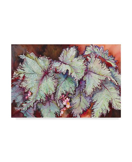 "Trademark Global Joanne Porter 'Begonia Leaves' Canvas Art - 24"" x 16"" x 2"""