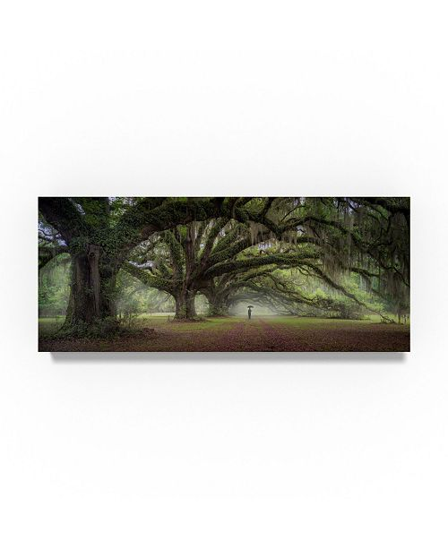 """Trademark Global Moises Levy 'Walking On The Trees Avenue' Canvas Art - 47"""" x 20"""" x 2"""""""