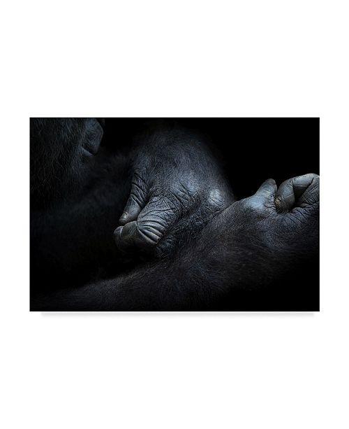 """Trademark Innovations Norbert Maier 'Gorillas Hands' Canvas Art - 24"""" x 2"""" x 16"""""""