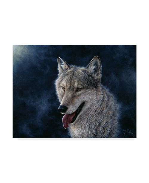 "Trademark Global Jeff Tift 'Wolf' Canvas Art - 24"" x 18"" x 2"""