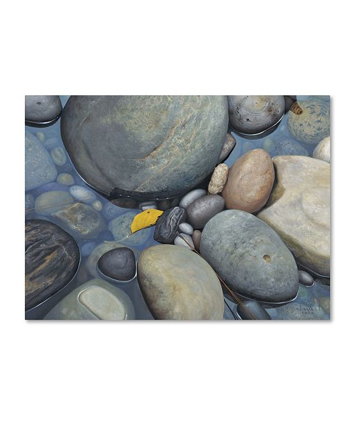 "Trademark Global Stephen Stavast 'Reflections on a Gray Day' Canvas Art - 32"" x 24"" x 2"""