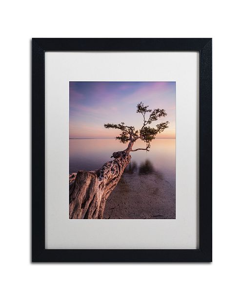 """Trademark Global Moises Levy 'Water Tree IV' Matted Framed Art - 16"""" x 20"""" x 0.5"""""""