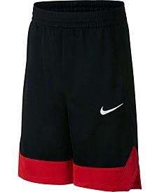 Big Boys Colorblocked Shorts