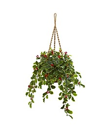 """40"""" Variegated Holly with Berries Artificial Plant in Hanging Basket (Real Touch)"""