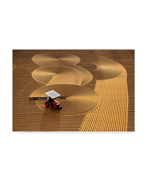 "Trademark Global Nese Ari 'Farm Lines' Canvas Art - 47"" x 30"" x 2"""
