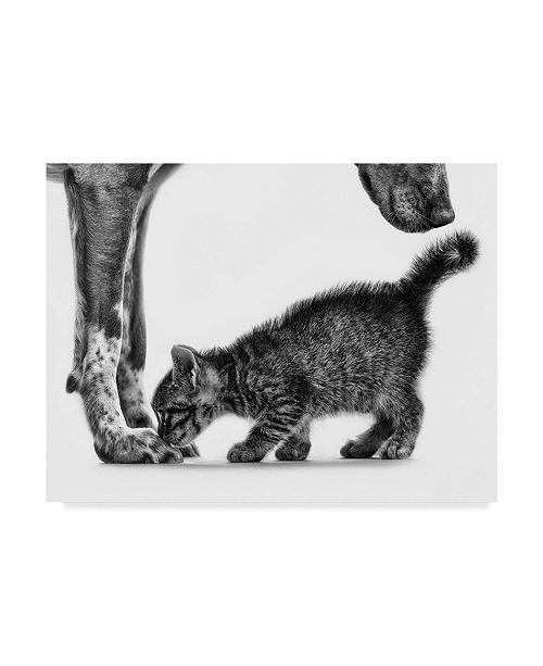 """Trademark Global Monte Pi 'Smell Me' Canvas Art - 47"""" x 35"""" x 2"""""""