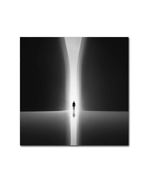 "Trademark Global Nadav Jonas 'Rebirth' Canvas Art - 24"" x 24"" x 2"""