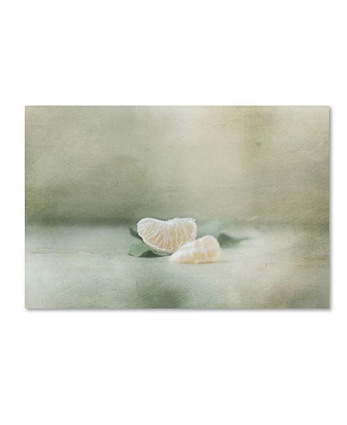 "Trademark Global Delphine Devos 'Vintage Tangerine' Canvas Art - 24"" x 16"" x 2"""
