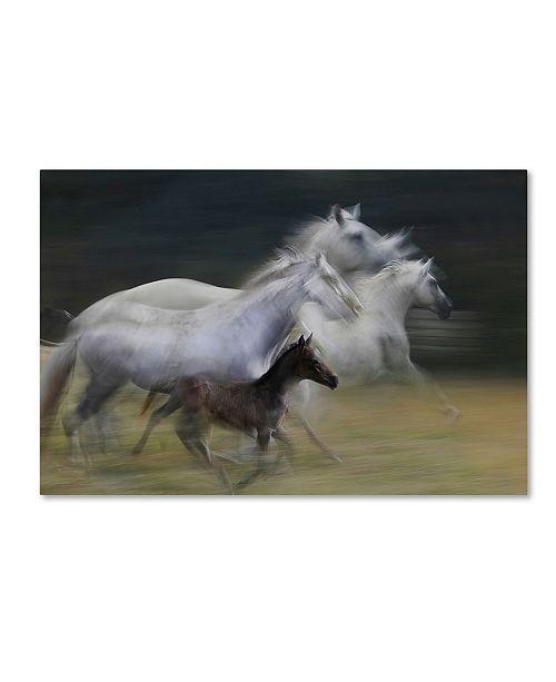 "Trademark Global Milan Malovrh 'In Gallop' Canvas Art - 32"" x 22"" x 2"""