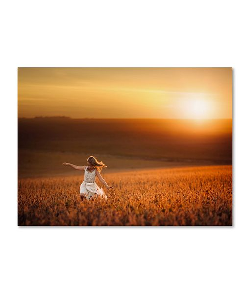 "Trademark Global Jake Olson 'Dusk' Canvas Art - 32"" x 24"" x 2"""