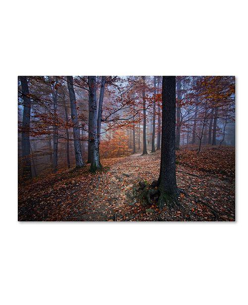 """Trademark Global Izabela Laszewskamitrega 'I Was Lost I Was Found' Canvas Art - 19"""" x 12"""" x 2"""""""