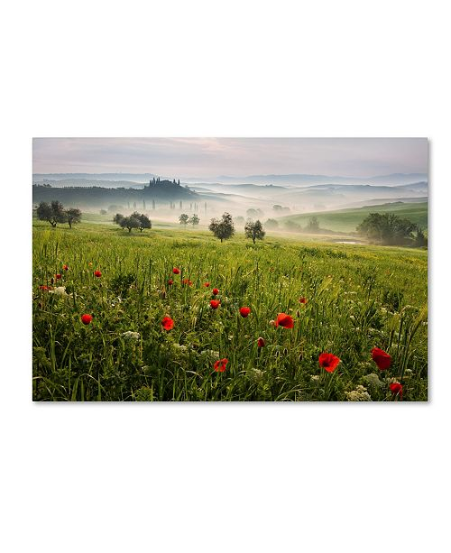 "Trademark Global Daniel Rericha 'Tuscan Spring' Canvas Art - 24"" x 16"" x 2"""