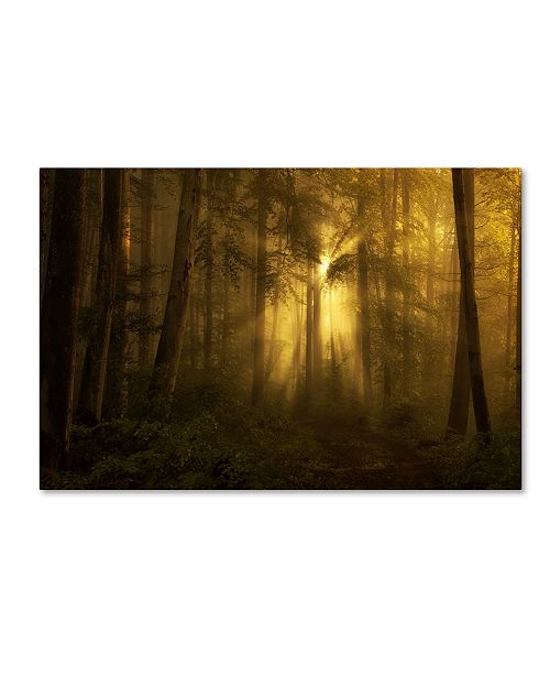 """Trademark Innovations Norbert Maier 'Yellow The Bigger Picture' Canvas Art - 24"""" x 16"""" x 2"""""""