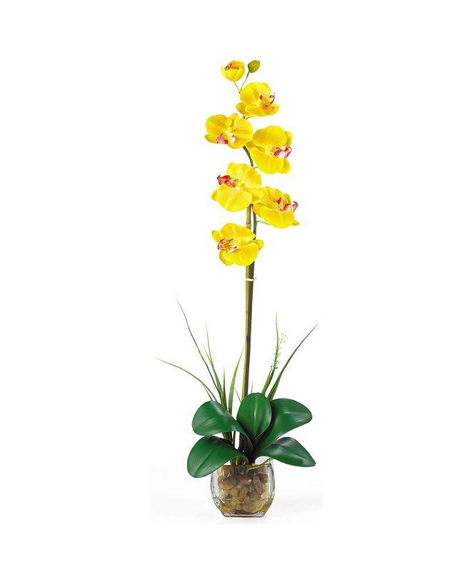Nearly Natural Single Phalaenopsis Liquid Illusion Silk Flower Arrangement