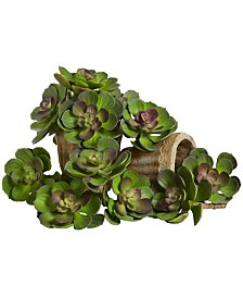 "Nearly Natural 5"" Echeveria Succulent Plant, Set of 12"
