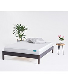OkiFirm Mattress - Queen, Mattress in a Box