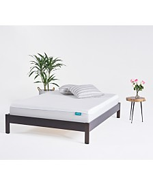 OkiFirm Mattress - Queen, Quick Ship, Mattress in a Box