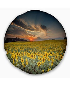 "Designart 'Sunflower Sunset With Cloudy Sky' Landscape Printed Throw Pillow - 16"" Round"