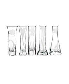 Bouquet Glass Budvases, Set Of 5