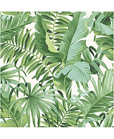 "Alfresco Palm Leaf Wallpaper - 396"" x 20.5"" x 0.025"""
