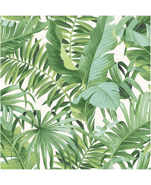 "Brewster Home Fashions Alfresco Palm Leaf Wallpaper - 396"" x 20.5"" x 0.025"""