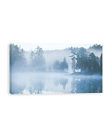 "Moonlight Mist Printed Canvas Art - 40"" W x 20"" H x 1.25"" D"