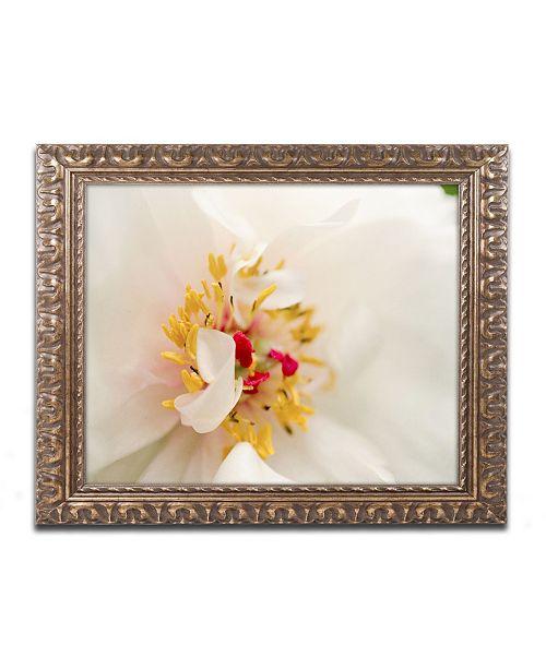 """Trademark Global PIPA Fine Art 'Eye of Peony' Ornate Framed Art - 11"""" x 14"""""""