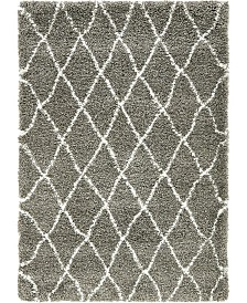 Bridgeport Home Fazil Shag Faz3 Gray 4' x 6' Area Rug