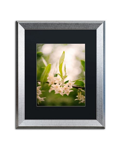 "Trademark Global PIPA Fine Art 'Floral Tranquility' Matted Framed Art - 16"" x 20"""