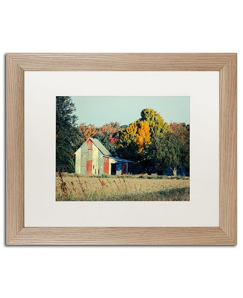 "Trademark Global PIPA Fine Art 'Patriotic Barn in Field' Matted Framed Art - 16"" x 20"""