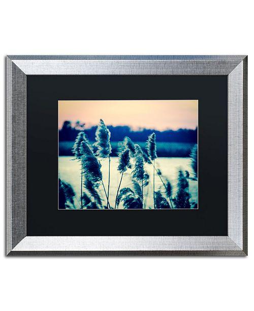 """Trademark Global PIPA Fine Art 'Sunset on the Marsh 2' Matted Framed Art - 16"""" x 20"""""""