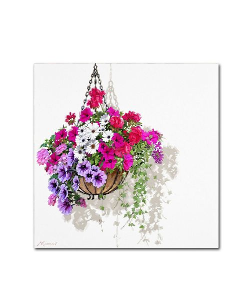 "Trademark Global The Macneil Studio 'Hanging Basket' Canvas Art - 18"" x 18"""
