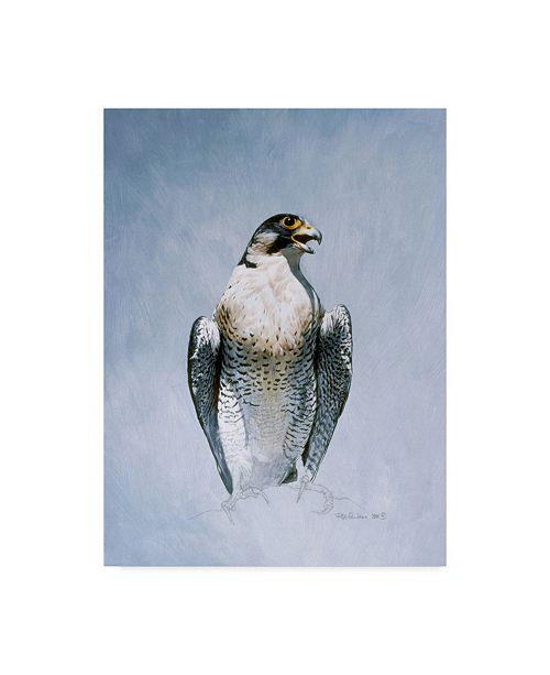 "Trademark Global Ron Parker 'Peregrine Falcon' Canvas Art - 18"" x 24"""