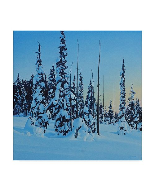 "Trademark Global Ron Parker 'Snowy Forest' Canvas Art - 18"" x 18"""